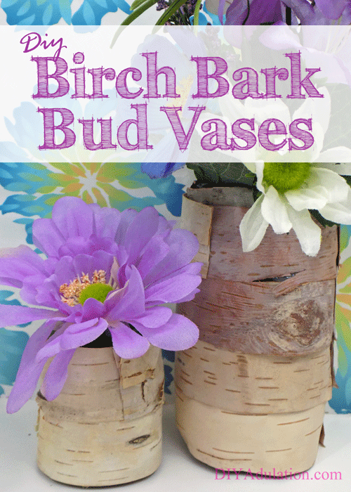 DIY Birch Bark Bud Vases + A Spring Giveaway