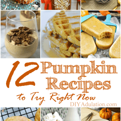 12 Pumpkin Recipes to Try Right Now + MM 172