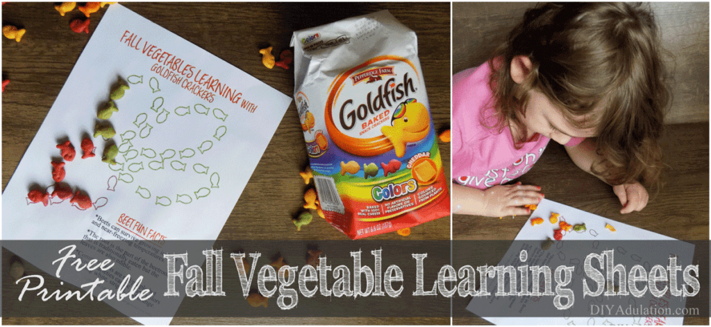 Get kids excited about their veggies with these free Fall Vegetable Learning Sheets. They'll infuse snack time with fun facts, sorting skills, & color fun. #ad