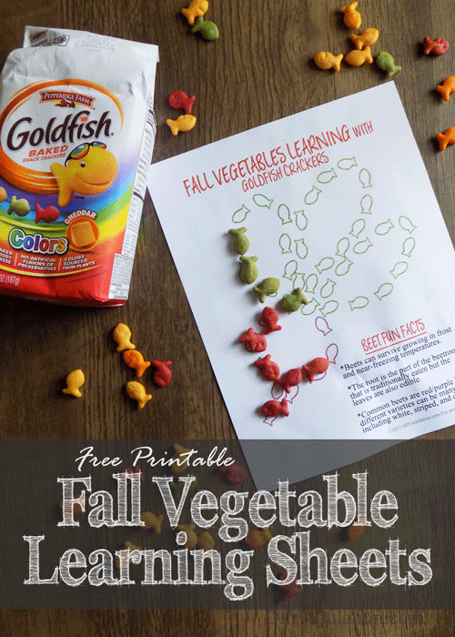 Free Printable Fall Vegetable Learning Sheets