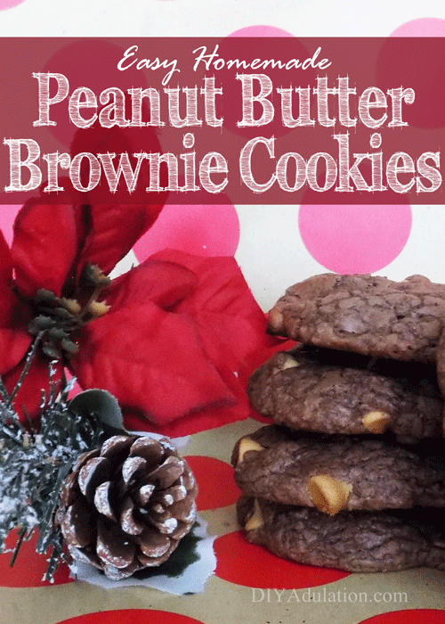 Easy Homemade Peanut Butter Brownie Cookies