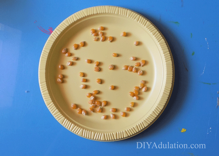 Yellow plastic plate with un-popped popcorn inside