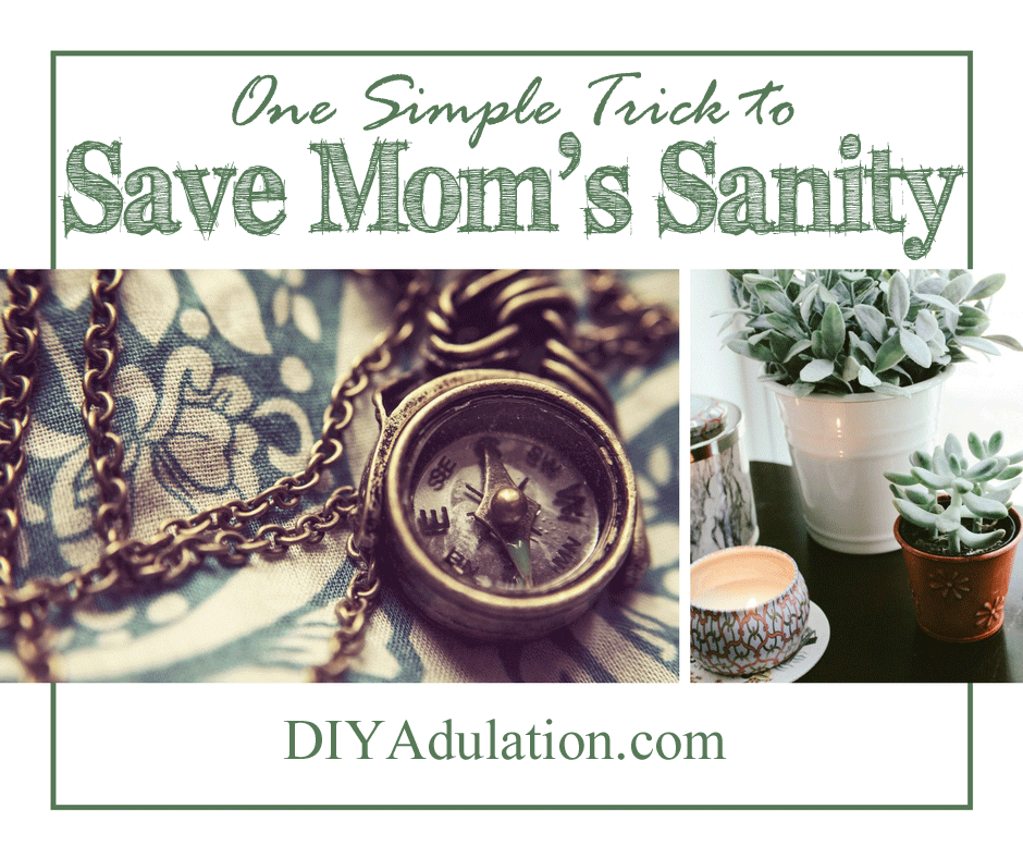 Collage of succulents, candles, and compass with text overlay: One Simple Trick to Save Mom's Sanity