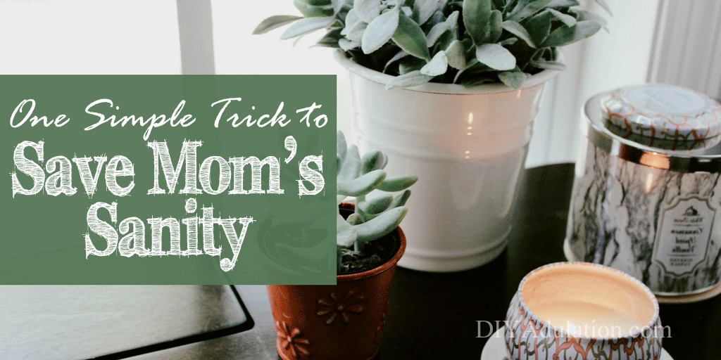Succulents and candle with text overlay: One Simple Trick to Save Mom's Sanity