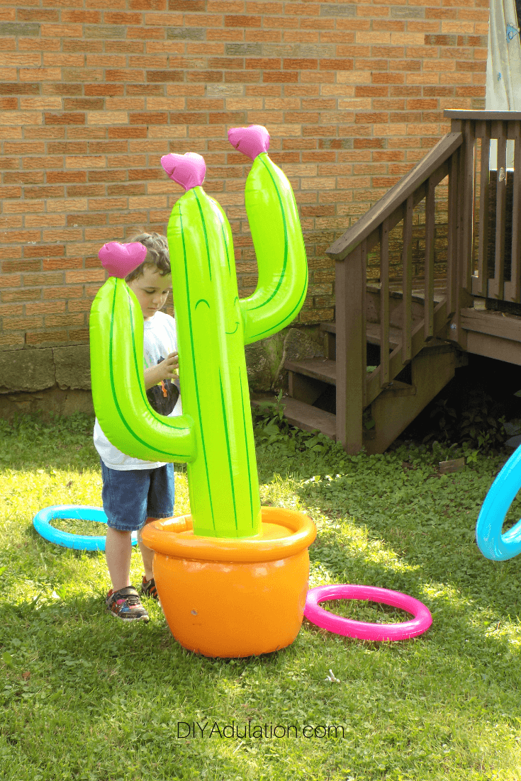 Boy Behind Cactus Ring Toss Game