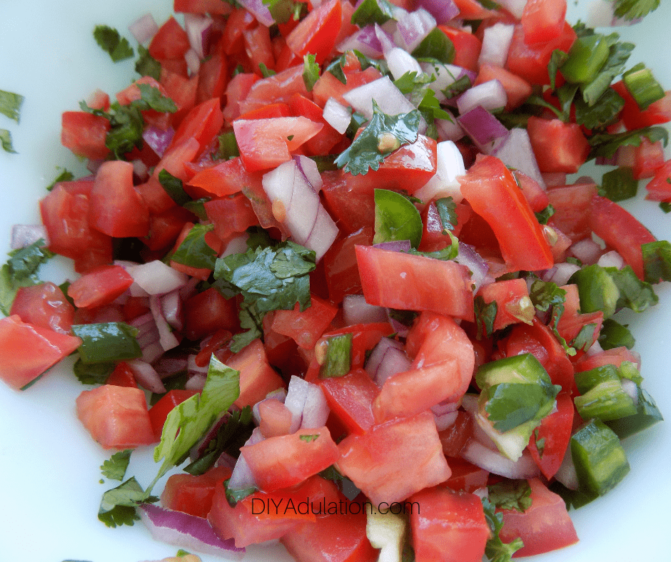 Close Up of Fresh Salsa