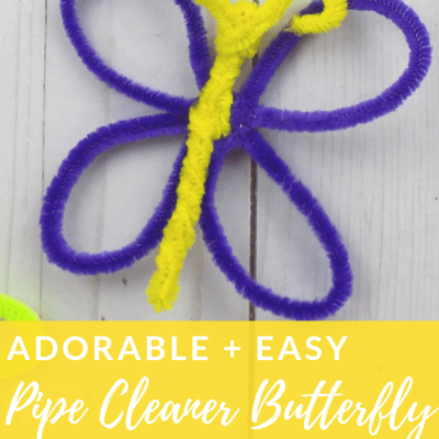 Adorable and Easy Pipe Cleaner Butterfly Craft