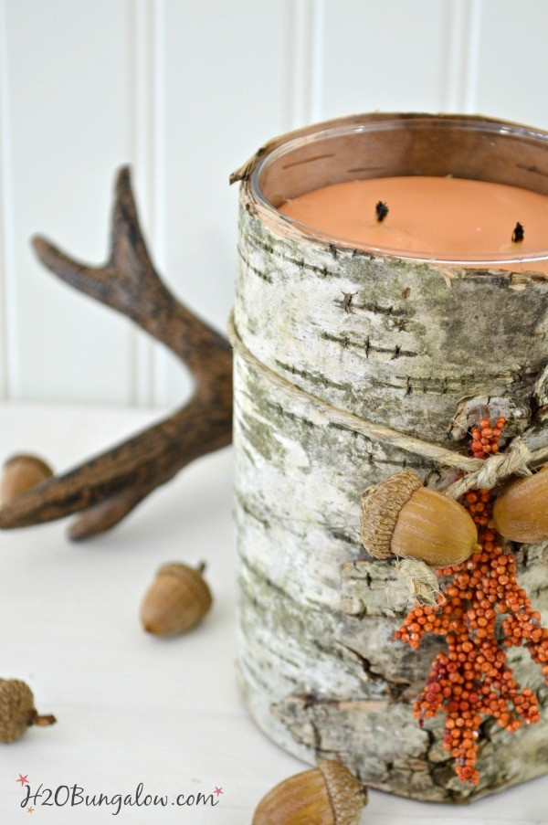 Birch bark candle with acorns