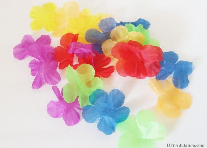 Flowers from Hawaiian Lei