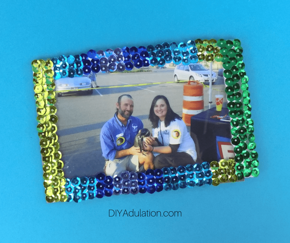 Picture Framed in Sequinned Magnetic Frame