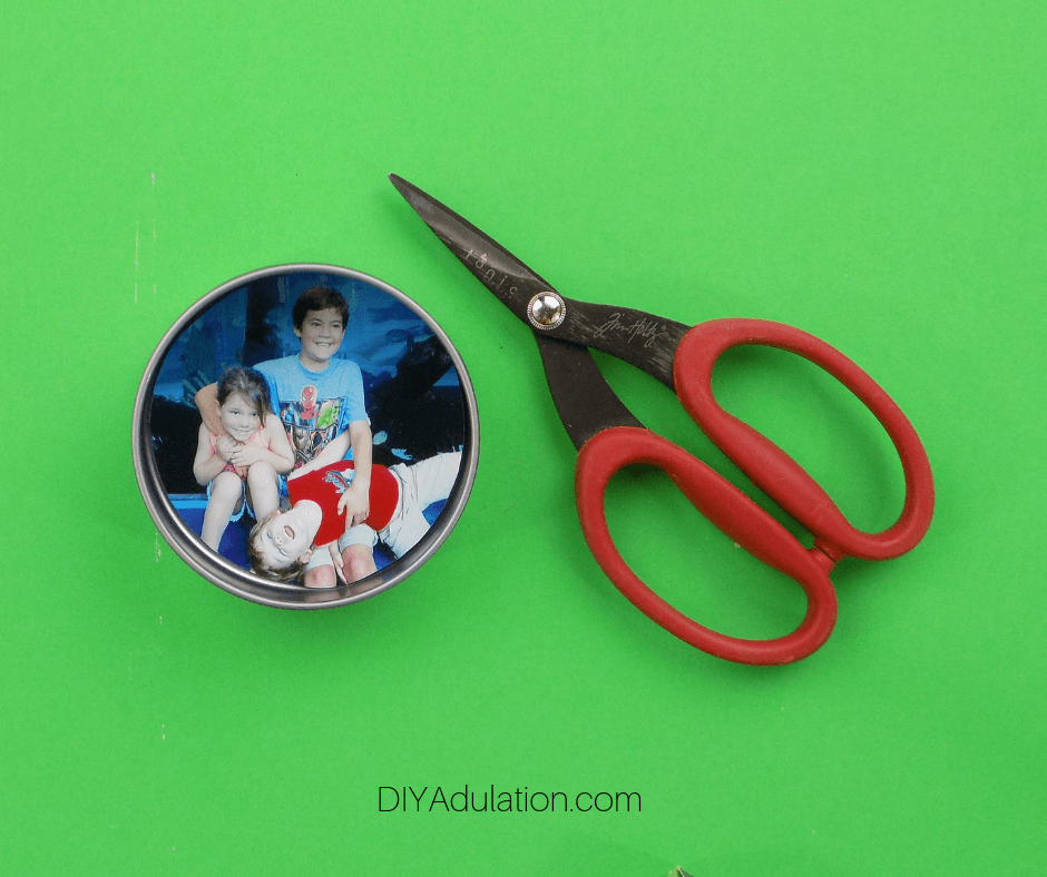 Picture in Container next to Scissors
