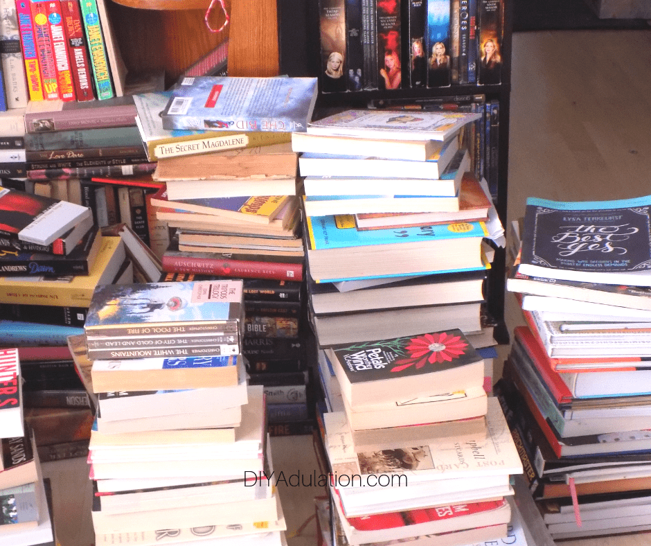 Piles of Books next to DVDs