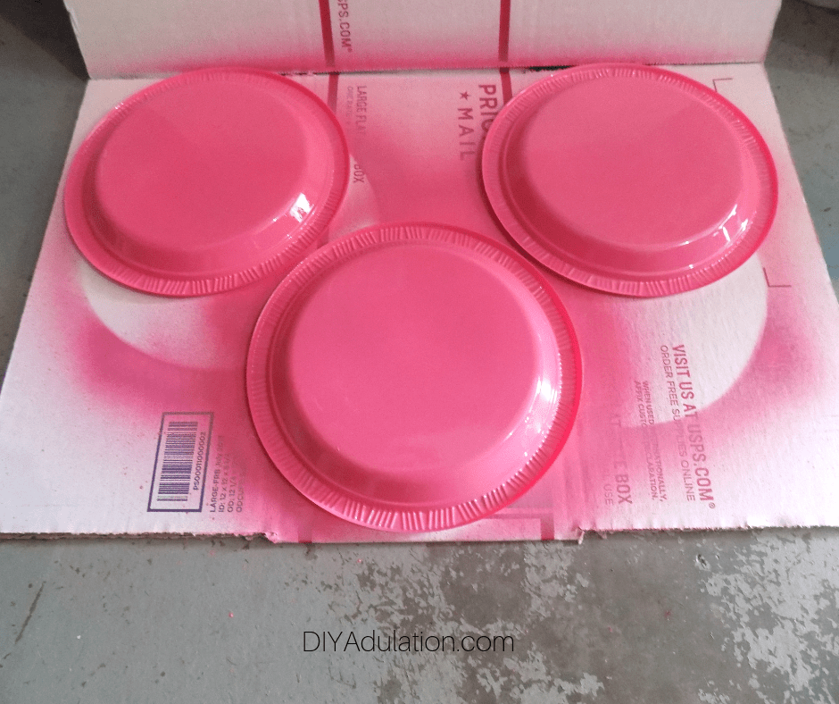 Pink Painted Plates on Cardboard