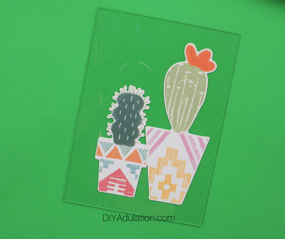 Potted Cactus Stickers on Glass Rectangle