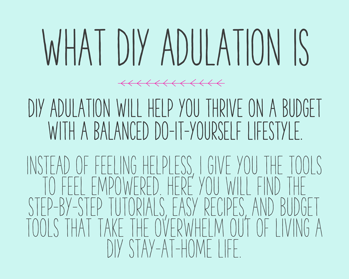 Text: What is DIY Adulation