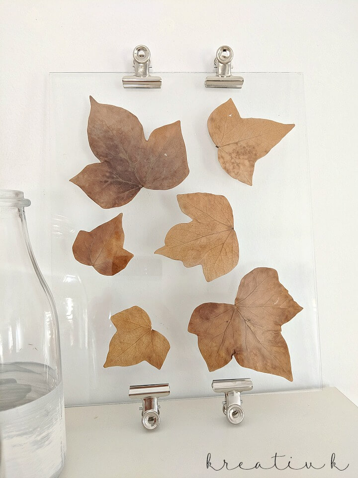 Fall leaf glass display on table