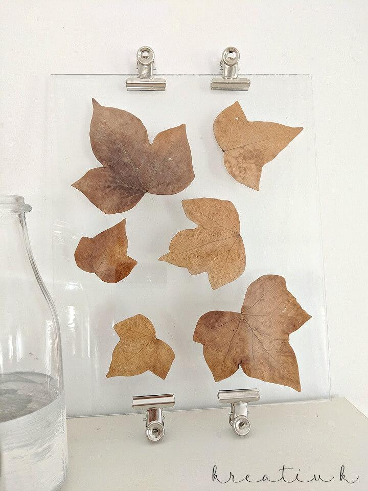 Fall leaf glass display on table