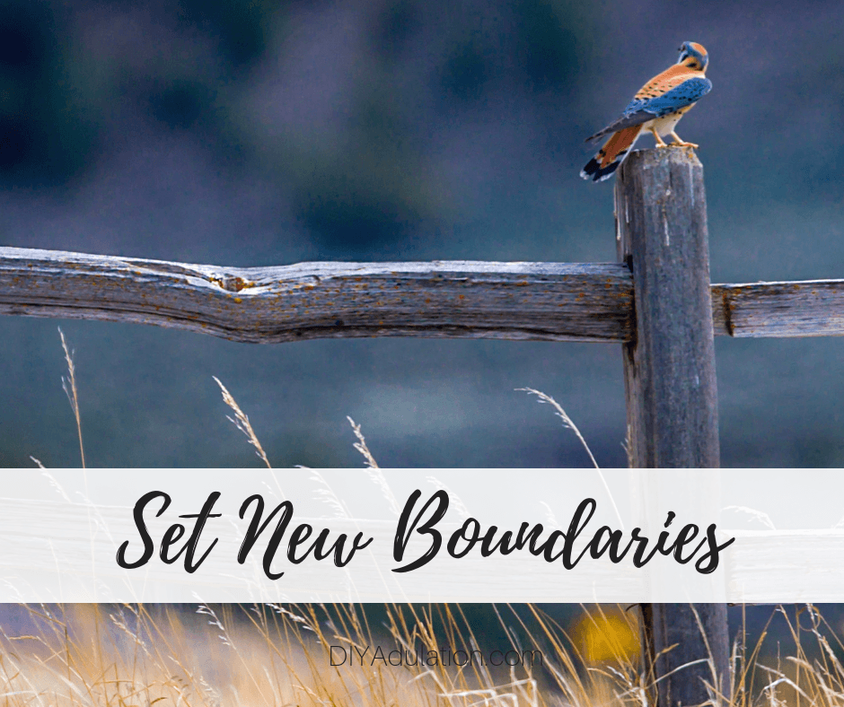 Bird on Wooden Fence Post with text overlay - Set New Boundaries
