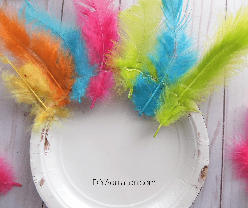 Feathers Glued to Back of Paper Plate