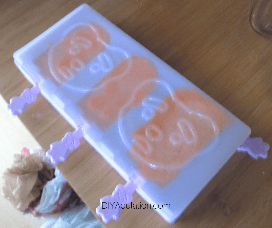 Lid on Ice Cream Pops Molds