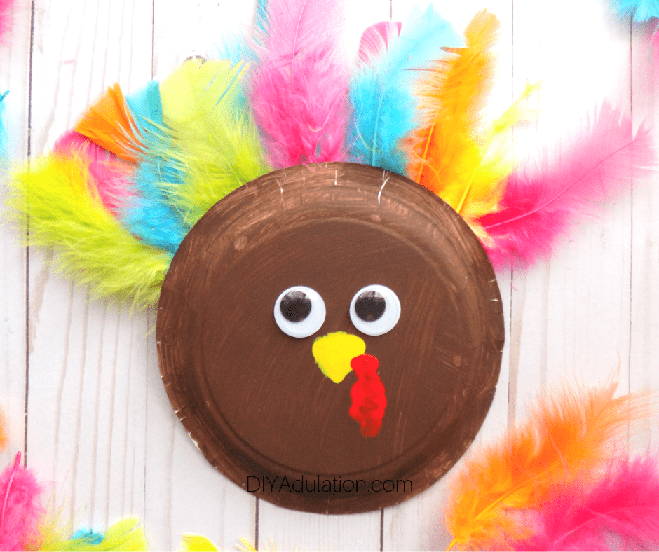 Paper Plate Turkey Next to Feathers