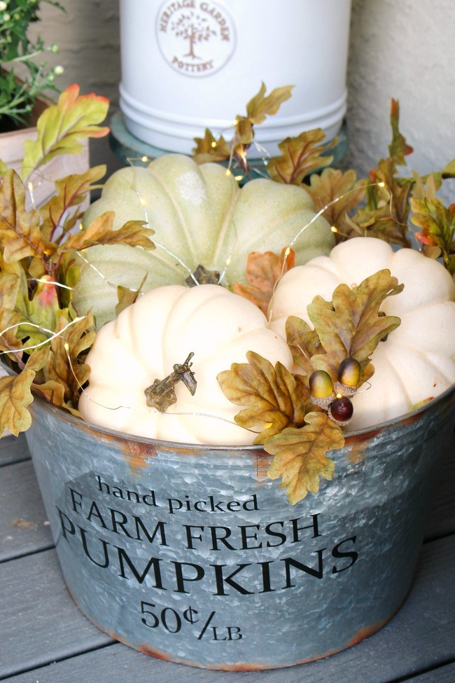 Pumpkins and Foliage in a Galvanized Bucket