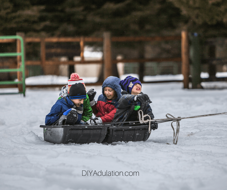 Kids on Sleds in the Snow